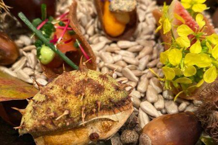 Restaurant Geschenk Gutschein Merkles Restaurant in Endingen